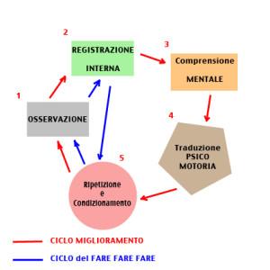 ciclo MIGLIORAMENTO